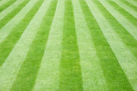 lawn-stripes